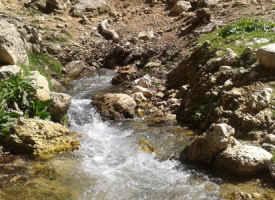 تصاویر سرچشمه اصلی رود الوند ریجاب